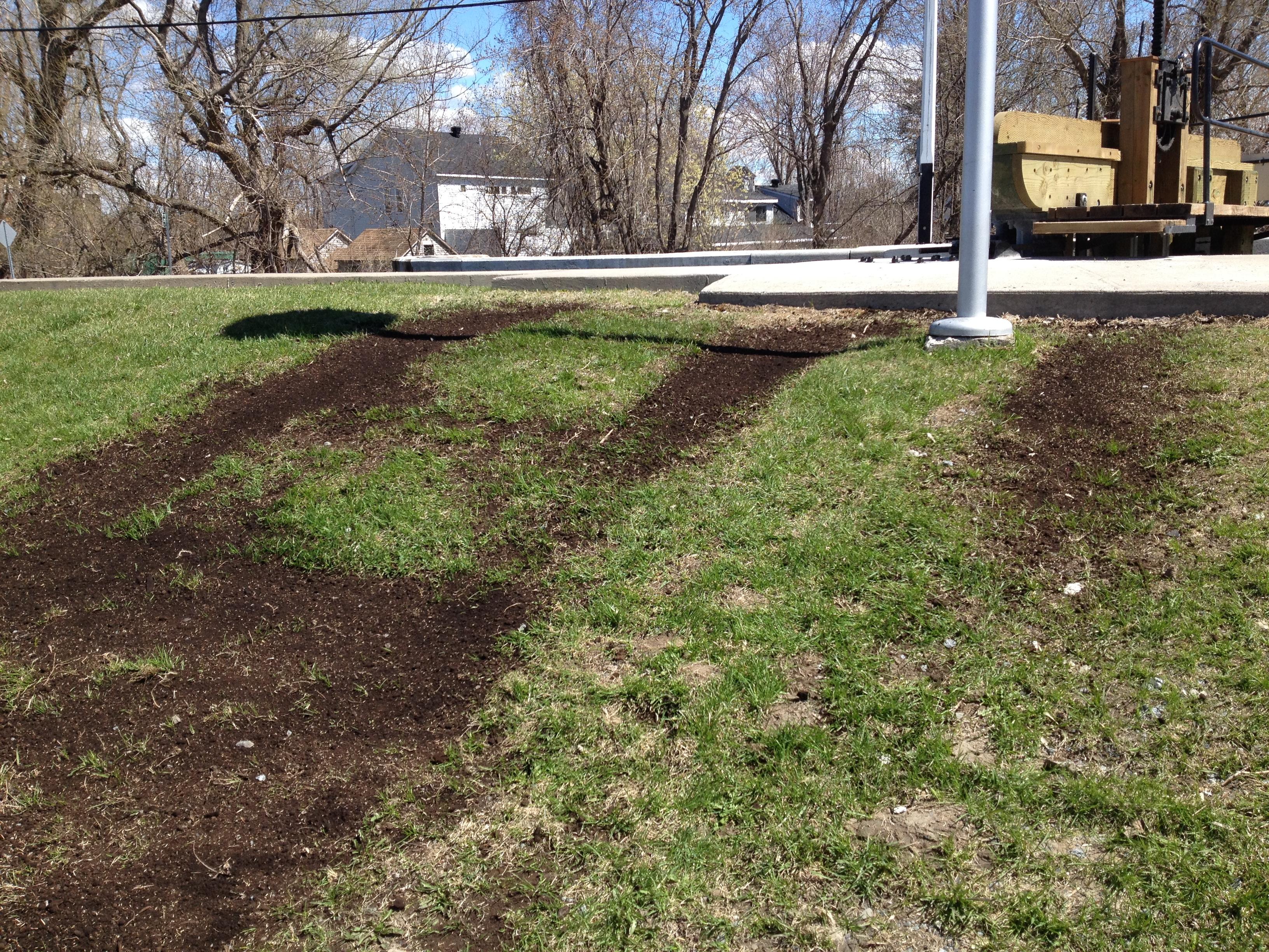 R fection et r ensemencement 3 sb pelouse for Refection pelouse prix